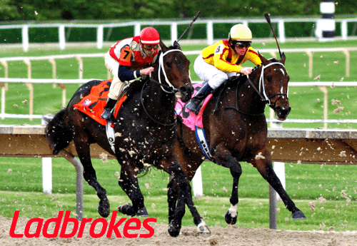 How to Bet on Ladbrokes Horse Racing