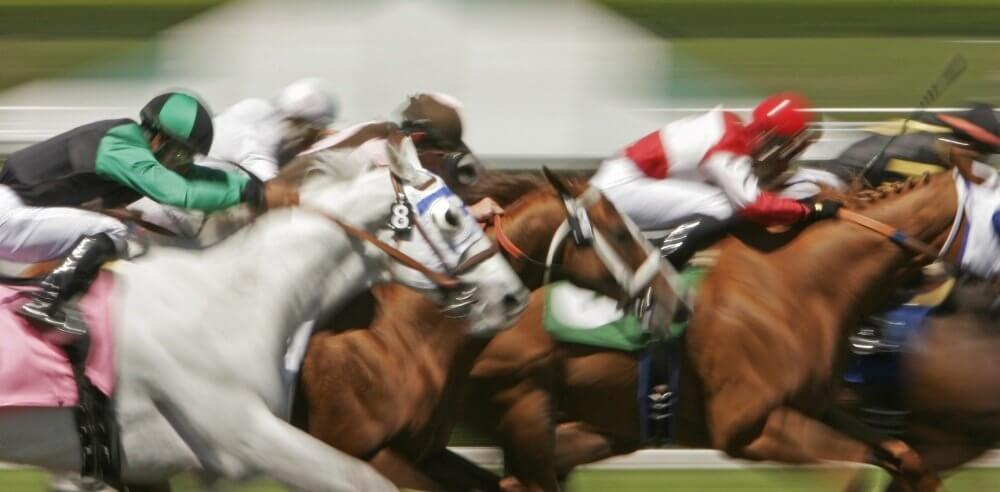 HORSE RACING STREAMING